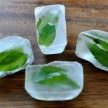 Как да си направим козметичен лед