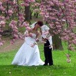 Съвети за младоженци