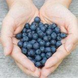 Кои храни са здравословни и лечебни