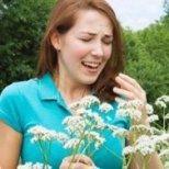 Кои са причините за сенната хрема и как да се предпазим от нея