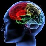 Как да направим ума си гъвкав