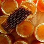 Защо е полезен пчелният клей