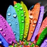 Цветна терапия