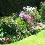 Как да оформим кът с цветя в градината