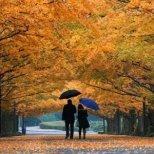 Как да се подготвим за есента