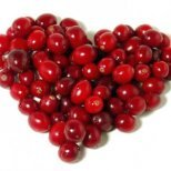 Невероятните свойства на червените боровинки