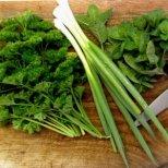 Зеленолистните зеленчуци-здраве и тонус за пролетта