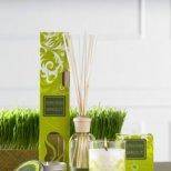 Какви аромати да подберете за вашият дом, за да има настроение
