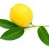 Лимонова диета 2-3 кг. за седем дни