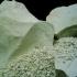 Невероятните качества на родопския чудодеен минерал зеолит (клиноптилолит)