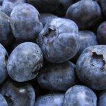 Каква храна е полезна за мозъка по време на работа