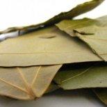 Лечебните свойства на дафиновият лист