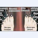 Как да разчетем съдбата си по пръстите на краката