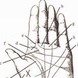 Как да гадаем по линиите на ръката