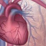 Коронарна болест на сърцето-симптоми и лечение