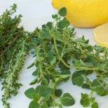 Природно лечение на рак с билки