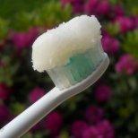 Как да си направим домашна паста за зъби