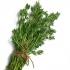 Как да лекуваме хеликобактер с билки