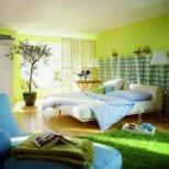 Как цветята да донесат успех в дома ви според Фън Шуй