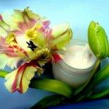 Как да си направим крем за лице в домашни условия