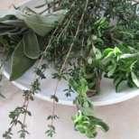 Рецепти от билки срещу невроза