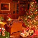 Коледни празници и традиции