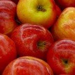 Действат ли диетите с плодове