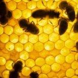 Маски за коса с мед