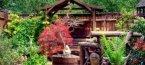 5 съвета за вашата градината