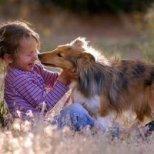 Как да помогнем на детето си, ако се страхува от животните