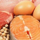 Какво представлява Протеиновата диета
