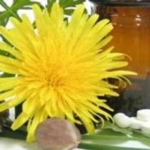 Фитотерапията - ключът към хормоналния баланс?