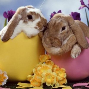 Още идеи за Великденска украса