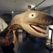 Легендарното морско чудовище Кракен е същестувало