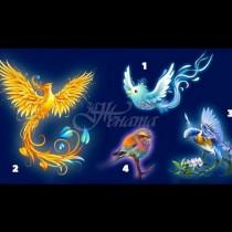 Магически тест: Изберете вашата птица и разберете какво лято ви очаква