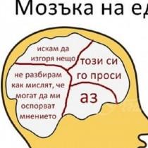Ето какво има в главата на всяка една зодия