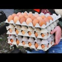 Опасност от птичи грип-Ето кои партиди български яйца изтеглят от пазара!
