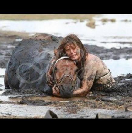 Жената продължава да плаче до коня си няколко часа-Ето какво се случи после!