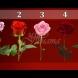 Розата, която изберете ще предскаже близкото ви бъдеще!