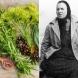 Рецептите на Баба Ванга за лечение с билки на БРОНХИТ, БОЛКИ В КРЪСТА, БОЛКИ В ГЪРДИТЕ