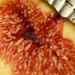 Ползите от смокини за тялото и здравето ни, за които даже не предполагаме