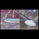 2 съставки и изтръгвате цялата мръсотия от килима, дори и професионално пране не може да го почисти така