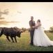 Най-забавните провали по време на сватбени снимки