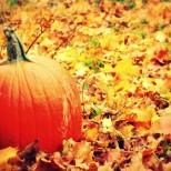 Хороскоп за октомври-Козирог-С голям шанс в любовта, Стрелец-Повратен момент
