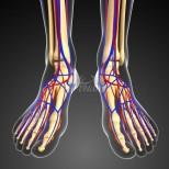 Ако често са ви студени краката и ръцете е възможно да имате някое от тези 6 заболявания