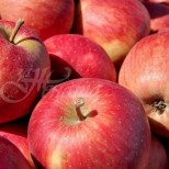 6 храни, които водят до подуване на корема и предизвикват газове и дискомфорт