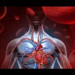 Прост начин, да разберете, дали сърцето ви работи нормално-Регулиране работата на сърцето у дома