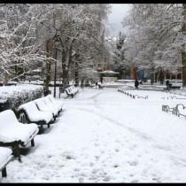 Дежурният синоптик към БАН: Значително застудяване предстои-Зимата настъпва с пълна сила!