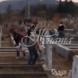 Деца крадат храна от гробище