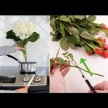 Защо да варим стъблата на букета и още 8 невероятни трика от кухнята на опитните цветари: